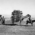 Uzbekistan: Caravan, C1910 by Granger
