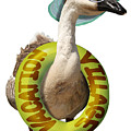 Vacation Time For Summer Goose by Gravityx9 Designs