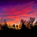 Vacaville Sunset Silhouette  by Brian Tada