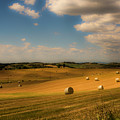 Val D'orcia Field With Hay Balls by Wolfgang Stocker