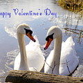Valentine's Day Greeting by John Chatterley