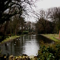 Valentines Park by Perggals - Stacey Turner