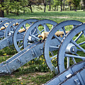 Valley Forge Artillery Park by John Greim