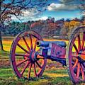 Valley Forge Canon by David Zanzinger