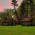 Valley Forge Natioanl Park by Laurie Prentice