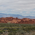 Valley Of Fire by Kelly Mezzapelle