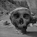 Valley Of The Skulls I Bw by David Gordon