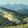 Valley Splendor by Granville Redmond