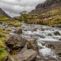 Valley Stream by Adrian Evans