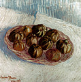 Van Gogh: Apples, 1887 by Granger