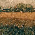 Van Gogh: Arles, 1888 by Granger