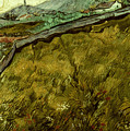 Van Gogh: Field, 1890 by Granger