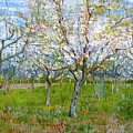 Van Gogh The Pink Orchard by Vincent Van Gogh