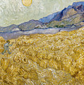 Van Gogh: Wheatfield, 1889 by Granger