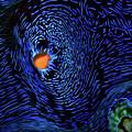 Van Gogh's Clam by Doug Sturgess