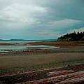 Vancouver Island N Her Beaches by Joseph Coulombe