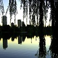 Vancouver- Lost Lagoon by Will Borden