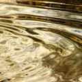Vanilla Glaze by Donna Blackhall