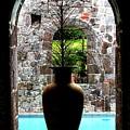 Vase In A Window by Ian  MacDonald