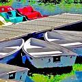 Boats Summer Vasona Park by Scott L Holtslander