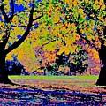 Vasona Two Oaks Fall by Scott L Holtslander