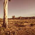 Vast Pastoral Australian Countryside  by Jorgo Photography - Wall Art Gallery