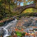 Vaughan Brook And Arch Bridge by Rick Berk