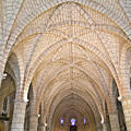 Vaulted Ceiling And Arches by Douglas Barnett