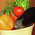 Vegetable Bowl by Ira Marcus