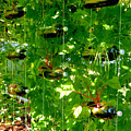 Vegetables Plant For Urban Life 2 by Jeelan Clark