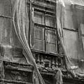 Veiled Window by Michael Kirk