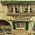 Veltliner Keller by Jost Houk