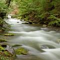 Velvet Stream by Idaho Scenic Images Linda Lantzy