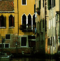Venetian Gold by Donna Corless