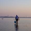 Venetian Lagoon, Clamming by Erla Zwingle