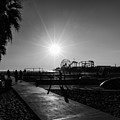 Venice Beach by Chris Cousins