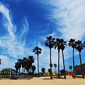 Venice Beach by Daniele Smith