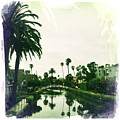 Venice Canals by Nina Prommer