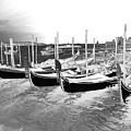 Venice Gondolas Silver by Rebecca Margraf