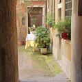 Venice Home by Doug Holck