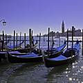 Venice Is A Magical Place by Madeline Ellis