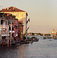 Venice Lover by Elaine Berger