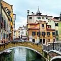 Venice Neighborhood by Kay Brewer