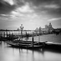 Venice by Nina Papiorek