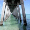 Venice Pier - Florida by Robert Richardson