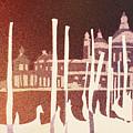 Venice Reversed by Ryan Fox