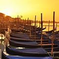 Venice Sunrise 100 by LS Photography