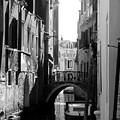 Venice by Sylvie Art Riot
