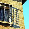 Venice Window by Tinto Designs