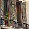 Venice Windows And Shutters by Doug Holck